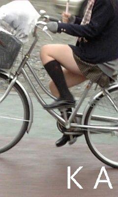 新座市の女子高生について [無断転載禁止]©bbspink.com->画像>157枚